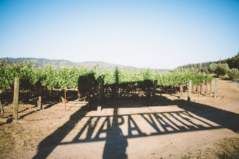 Napa Valley Destination Wedding Montreal Photographer Canada Vineyard Farmstead at Long Meadow Ranch