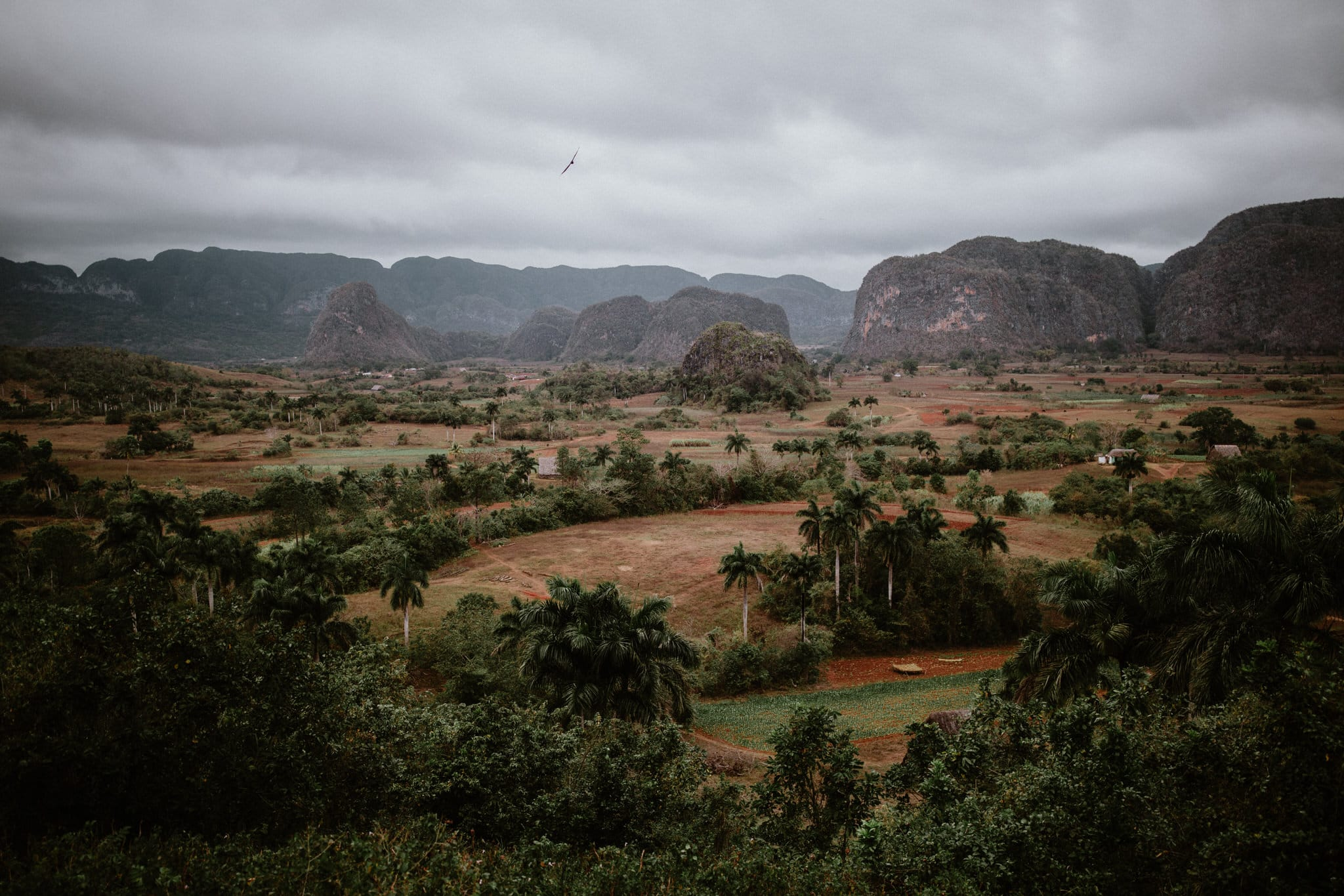 The pastoral countryside of Vinales, Cuba. Wedding and travel photographer Brent Calis.